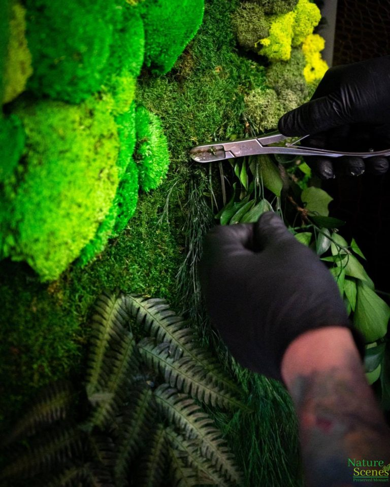 Stace Bleich Creating MossArt