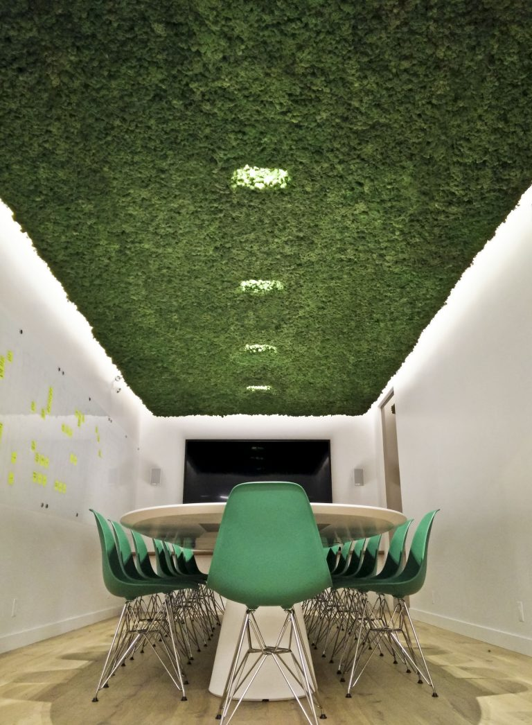 Boardroom Moss Ceiling