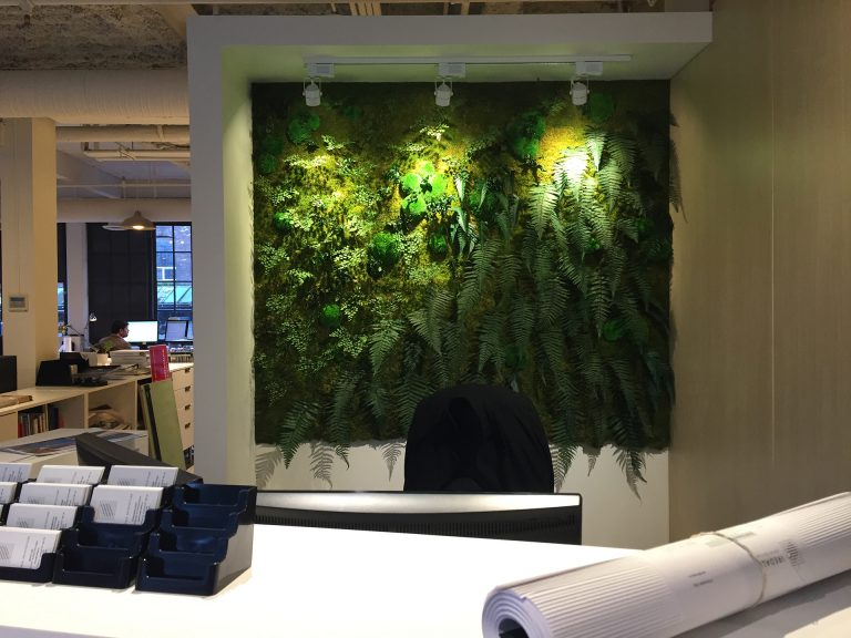 Architects Office Jungle Wall