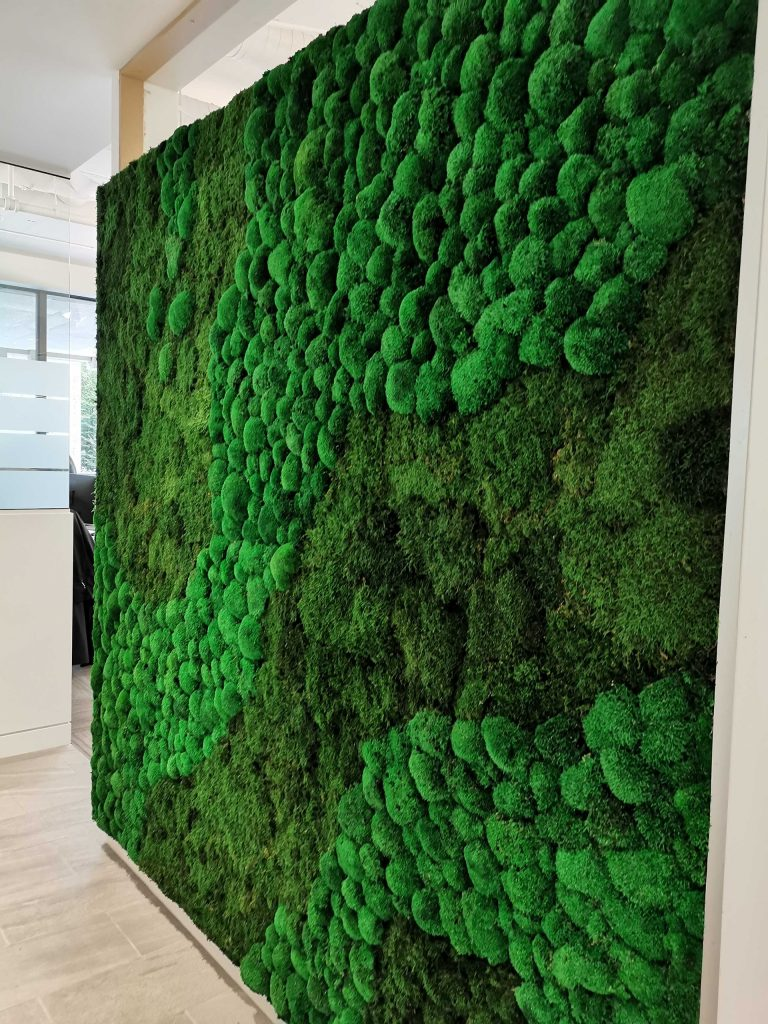 Large Office Moss Wall Art
