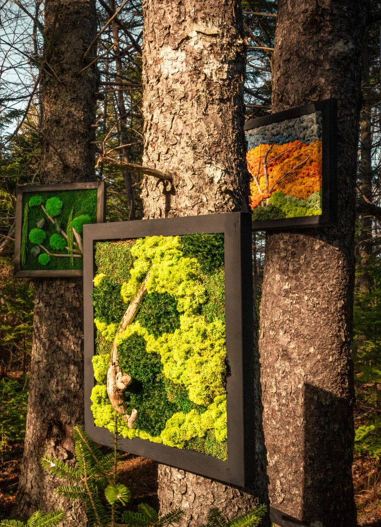MossArt Outdoor Art Gallery