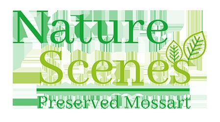 Nature Scenes Logo