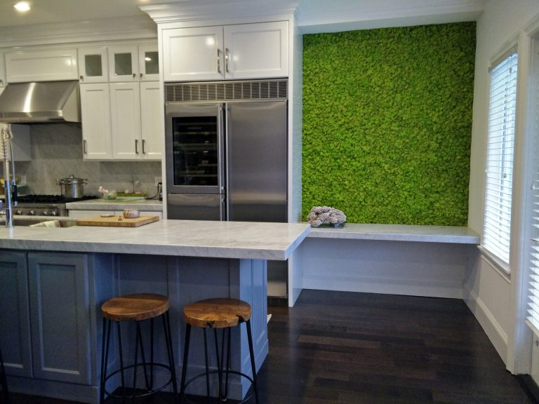 Kitchen Moss Wall