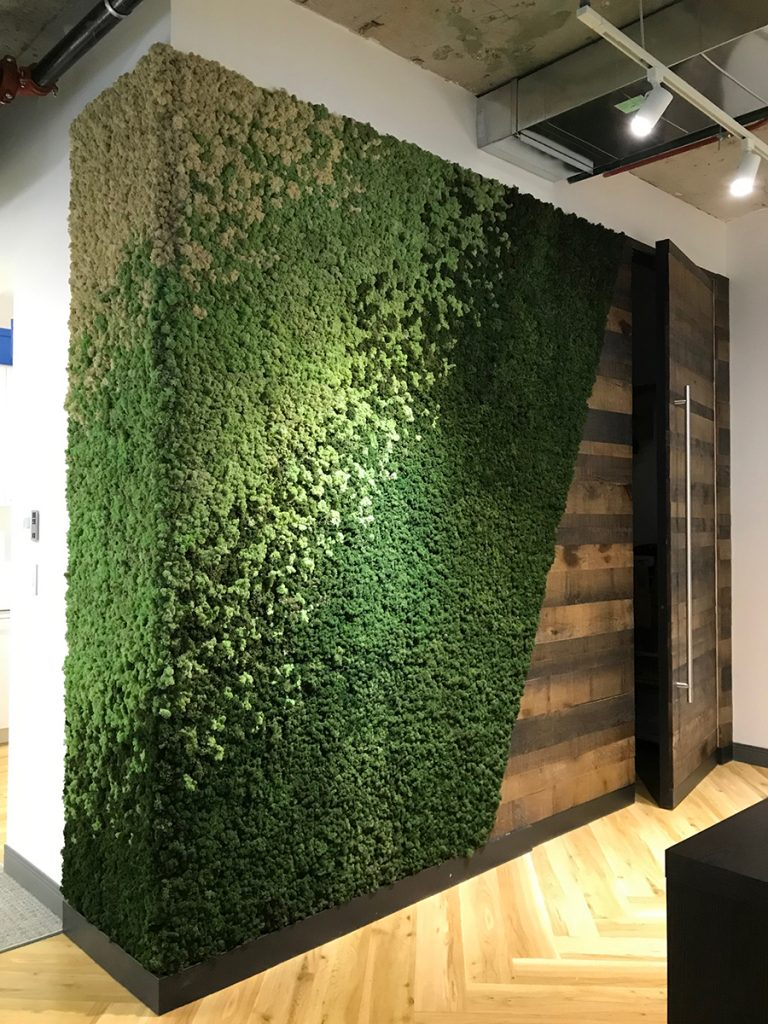 Example of Commercial MossArt in Office Space
